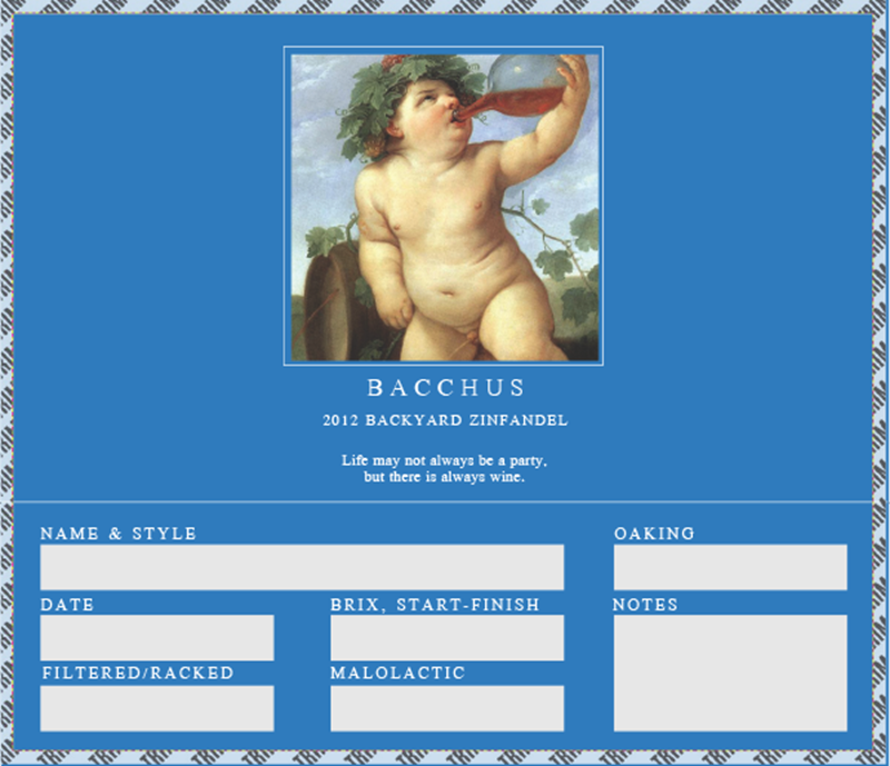 Picture of Bacchus Carboy